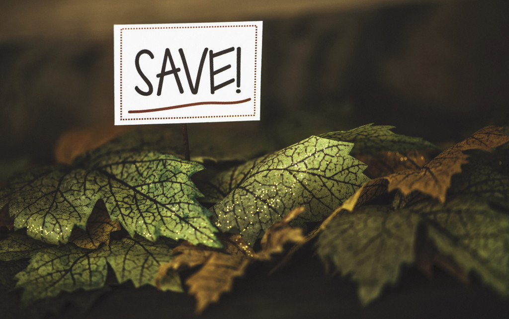 Fall Sale. Fall leaves with SAVE message
